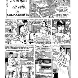 Marujas en Celo La Coleccionista por Armas
