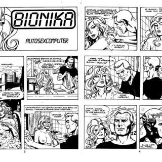 Autosexcomputer por Bionika