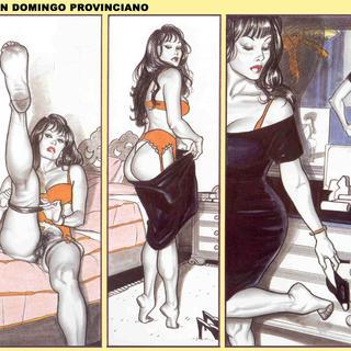 Un Domingo Provinciano de Giovanna Casotto