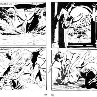 El Murcielago de Fuego por Lucifera