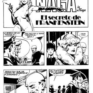 El Secreto de Frankenstein por Naga la Maga